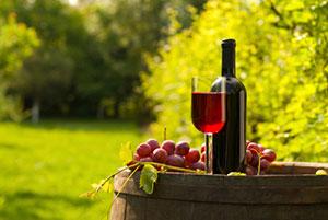 Niagara wine tours, niagara-on-the-lake, jordan, 20 valley