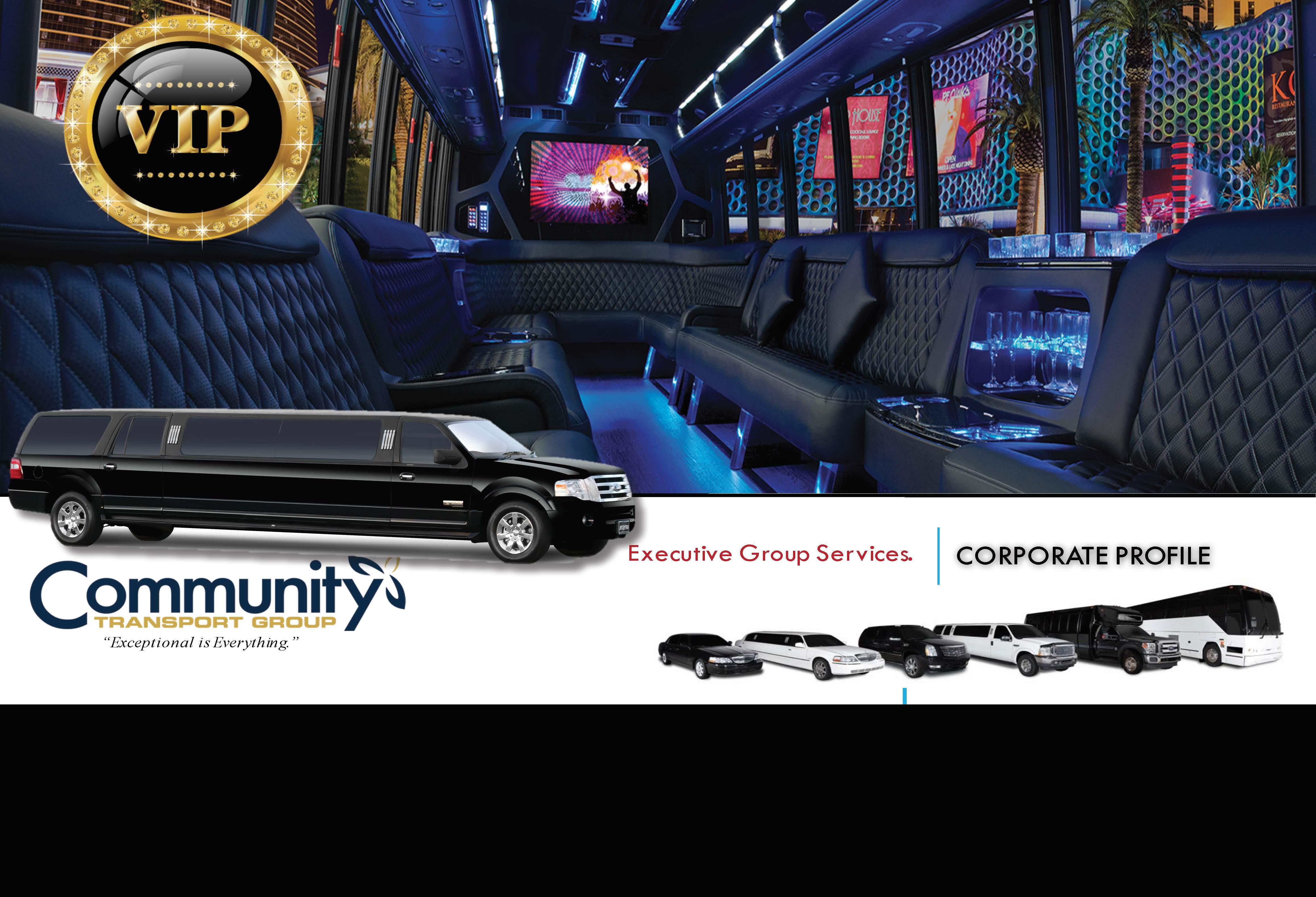 CTG-VIP-Website